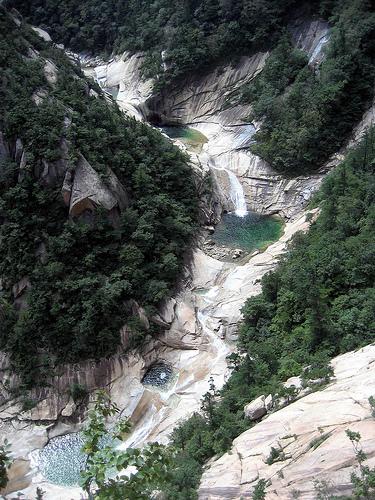 montana-en-corea.jpg